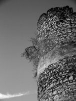 Medieval tower Part II by Heliogabal