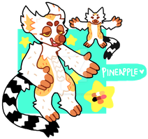 PINEAPPLE REF | 2015 by tropicalfriend