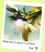 Weepinbell is about to attack by 0----0