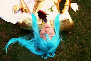 Funeral of Roses - Albafica by usagiyuu