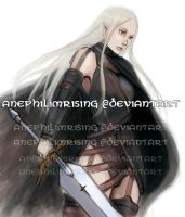 Claymore - Irene by anephilimrising