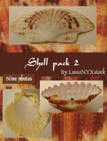 Shell pack - 2 by LunaNYXstock