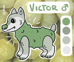 Victor Ref by puppybuns