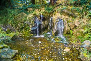 Fairy Pool Background Stock 2 by little-spacey