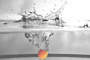 Physalis and water splash by FRichard-peint