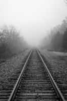 Tracks into the fog by tracykenefick