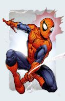 Classic Spidey by spidermanfan2099