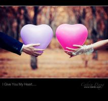 I Give You My Heart.... by kietdc
