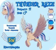 Thunder reference sheet by Margony