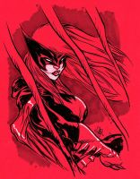 BATWOMAN by stalk