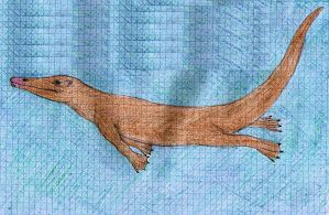 Chevrotain whale evolution - step 4 by palaeorigamipete