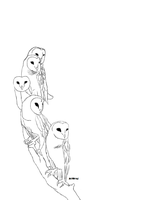 Free Owl Lineart by Airmead