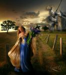 Dulcinea ... and Don Quijote with their stories by Amaranta-G