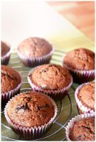 Dark Chocolate Muffins by pandrina