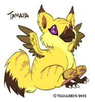 Request - Tamaya the Gryphon by tiakaneko