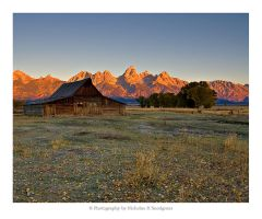 First Light On Mormon Row by anonymous66