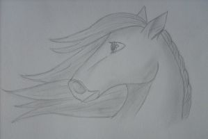Horse - Cartoon style~ by Perianth5