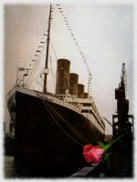 Roses For the Queen by RMS-OLYMPIC