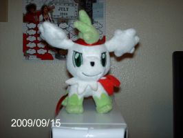 Skylex the Shaymin- photo by Wii2PARTY