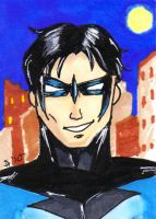 Nightwing by ShelleyMaree