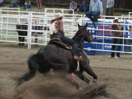 Rodeo Horse Stock 15 by horsecrazycool