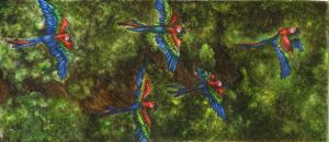 Macaws in flight by ZOMGwingly