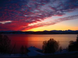 Red Sunset by Roshila