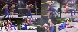 mixed pro wrestling match by andypedro