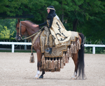 Gold Arabian Costume Stock 1 by Synyster-Stock