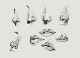 Practice - Nose / Mouth by K-appa