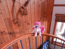 Ok spiral staircases are the best by EquestriaPlush