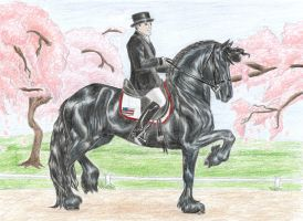 Black Horse and a Cherry Tree by EliteWarHorse