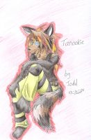 Tanookie by Teh-stupid-bug