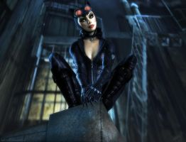 Catwoman 3 by Halli-well