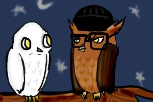 Owls by DeAtHofCopPeLIA