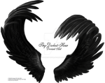 Airbrushed Wings - Matched by Thy-Darkest-Hour