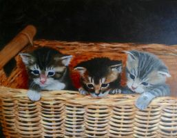 Basket Babies by agstudio1