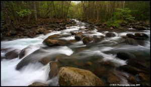 A Confluence, Mountain Streams by TRBPhotographyLLC