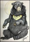 Maylee the Moleskine Moon Bear by BayouBaby