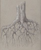 Deeply Rooted by Observer14