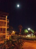 Nocturnal View by DingoPatagonico