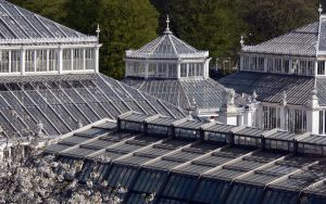 Temperate House by RoyalScanners