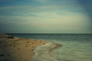beach by Tjandra1989