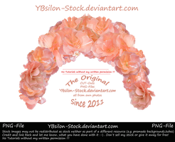 Apricot Flower Tiara by YBsilon-Stock