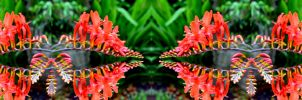 Crocosmiac Speak With Forked Tongue by aegiandyad