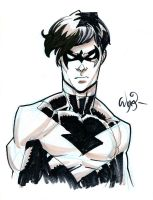 Nightwing by RyanOttley