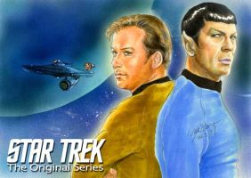 STAR TREK The Original Series by Emushi