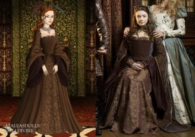 Princess Mary's Brown Tudor dress by LadyAquanine73551