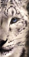Snow leopard by SheenaPikeArt