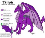 Trinsic Reference Sheet by hollyann